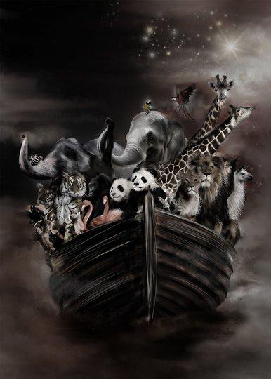 Linn Wold Poster 50x70 Noahs Ark