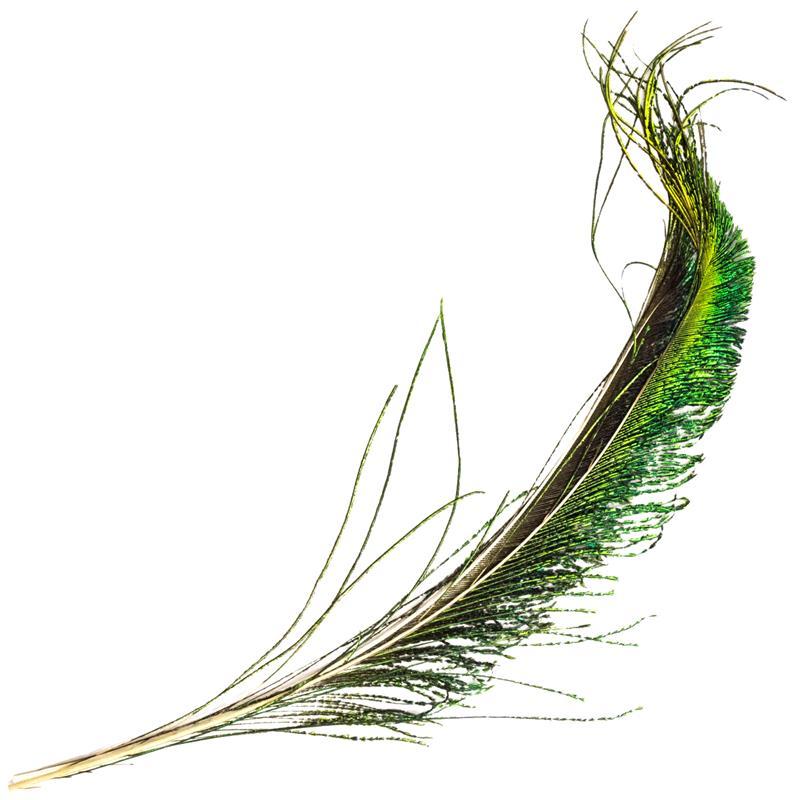 Peacock Swords Påfuglsverd fra Veniard