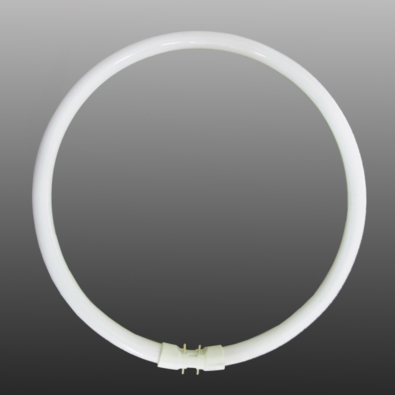 2GX13 T5 40W rengasloistelamppu, perusvalkoinen