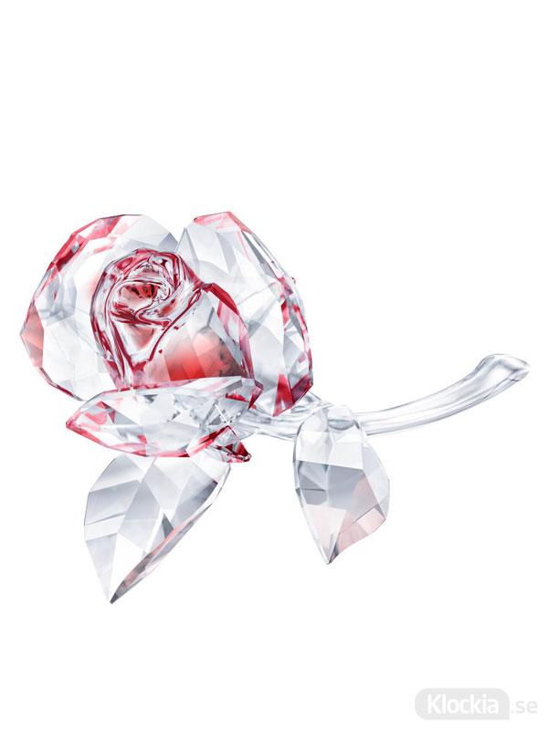 Swarovski Blossoming Rose, Red 5428561