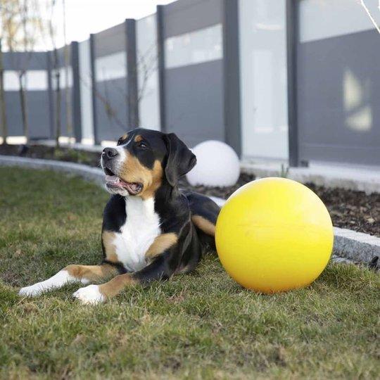 Kerbl Hundboll 30 cm