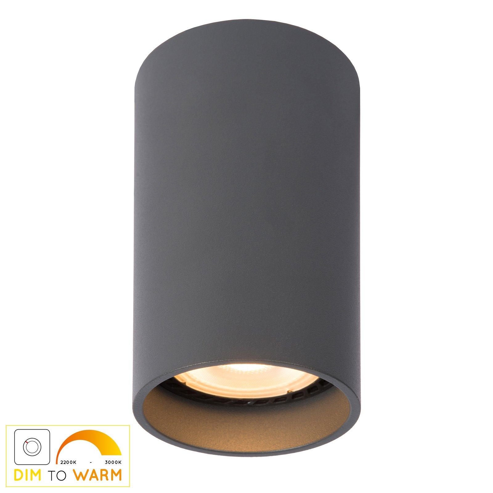Delto LED-taklampe dim to warm, rund, grå