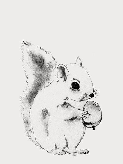 Lilou Lilou Poster Squirrel 50x70, Creme