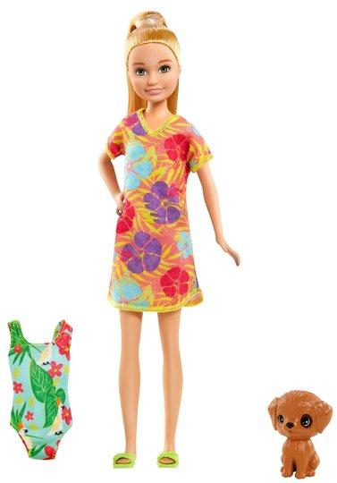 Barbie Dukke The Lost Birthday Stacie