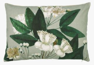 Capparis koristetyyny moniväri/vihreä