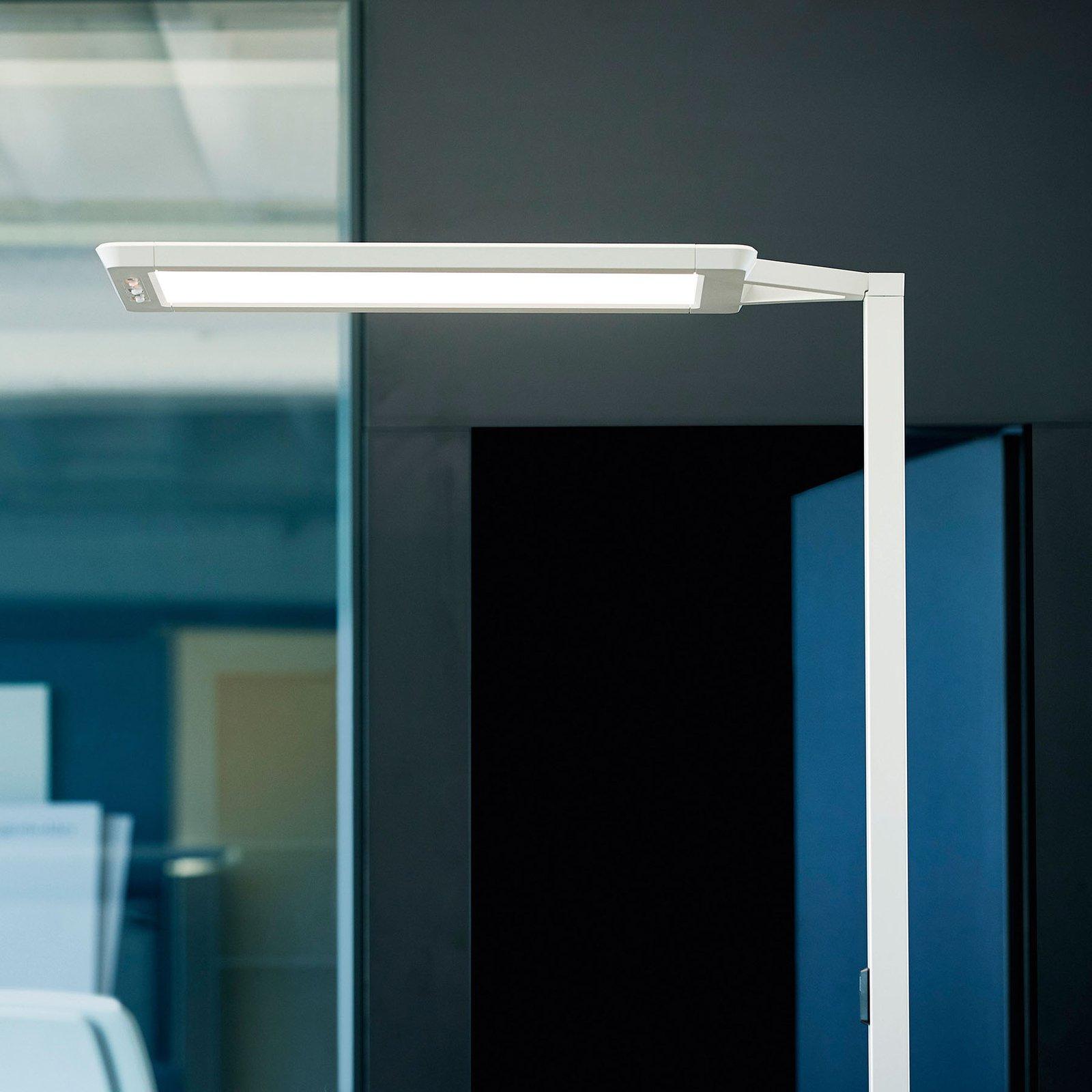 LED-gulvlampe Yara.single 4 000 K, BT, LTX, sølv