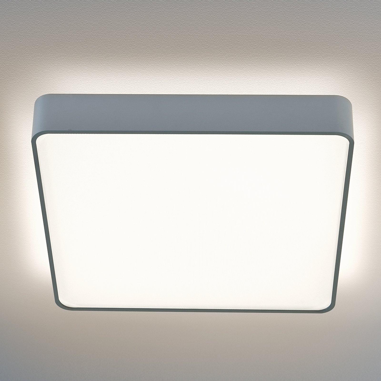 Caleo-X2 taklampe LED varmhvit 61,4 cm