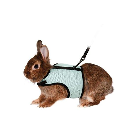 Sele Och Koppel Till Marsvin, Iller Och Små Kaniner