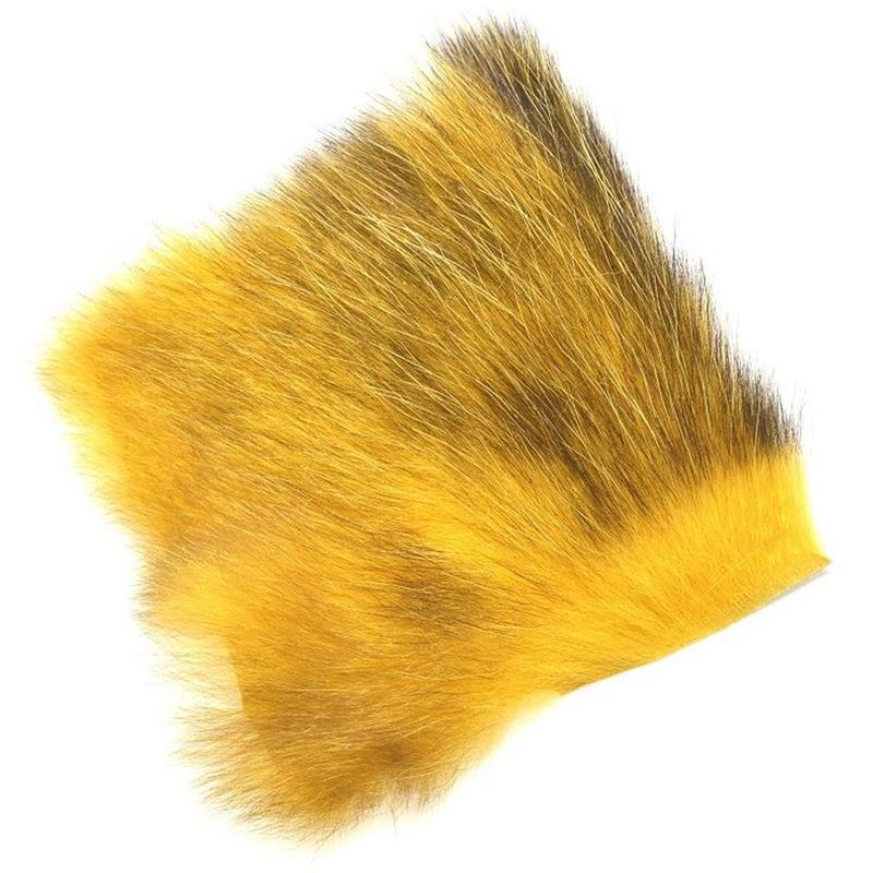 American Opossum Honey Gold C FutureFly