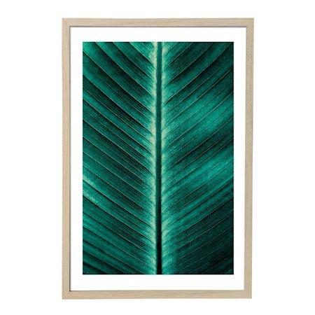 Poster Grønn med Ramme Natur