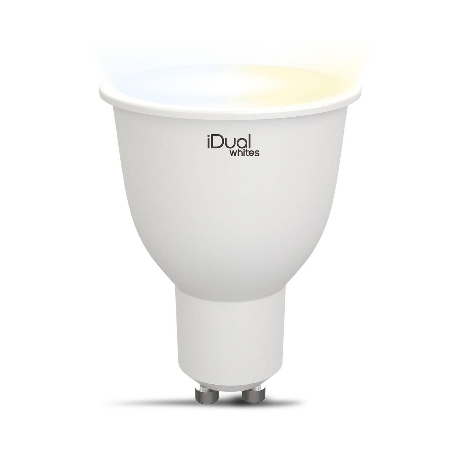 iDual Whites-LED-heljastin GU10 5,8W tunable white