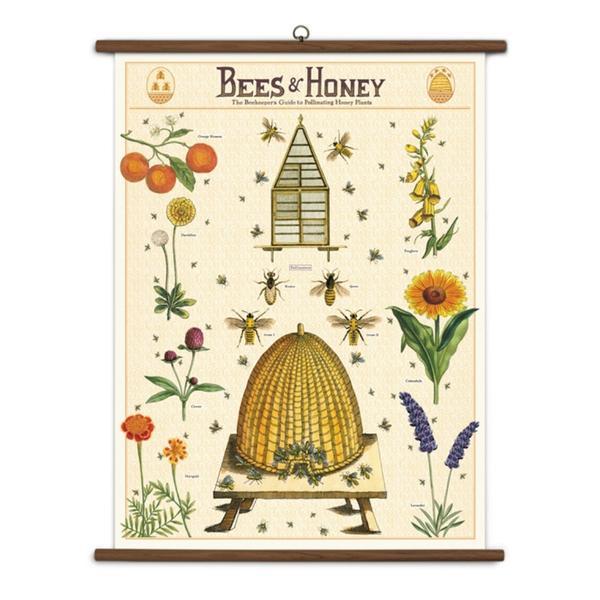Bees & Honey Art Print Large
