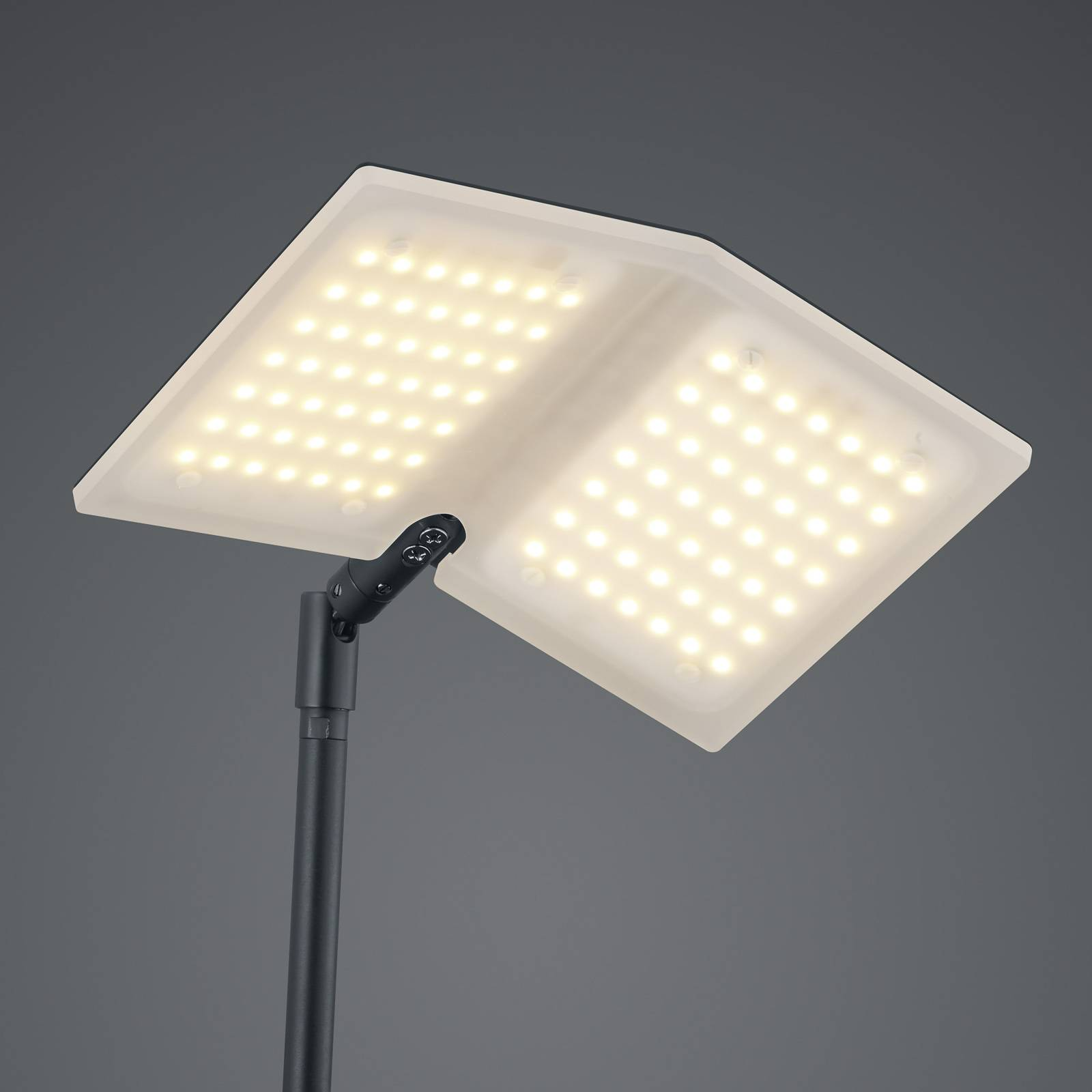 BANKAMP Book LED-lattiavalaisin, musta