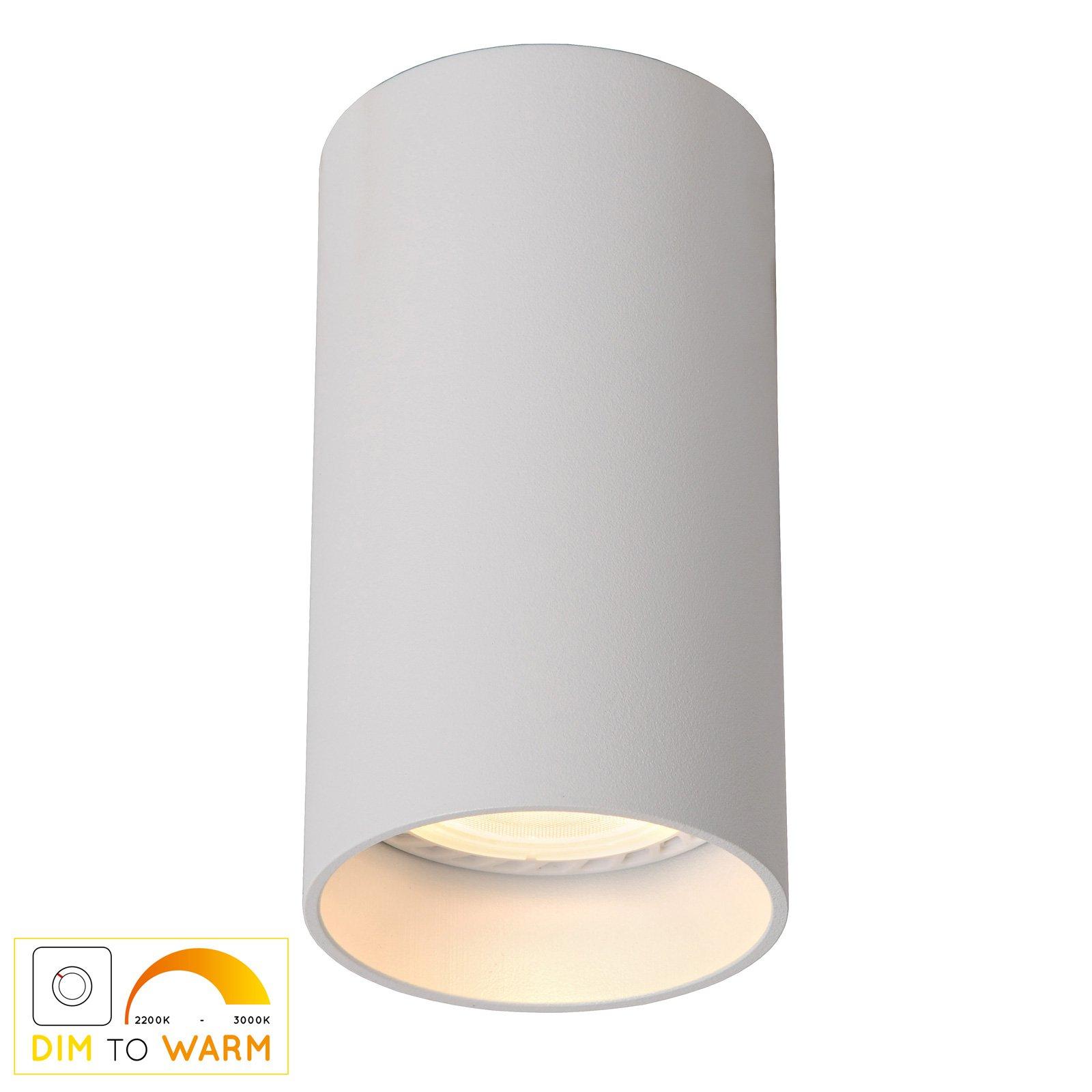Delto LED-taklampe dim to warm, rund, hvit
