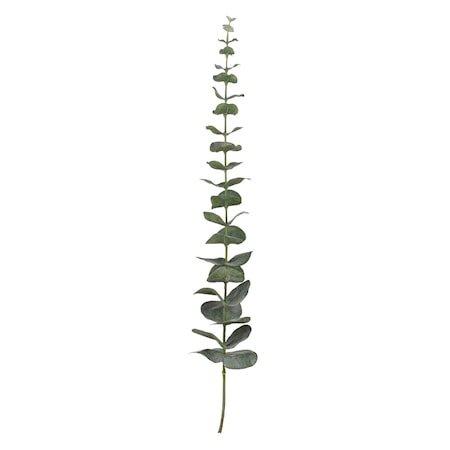 Flora eucalyptus H64 cm