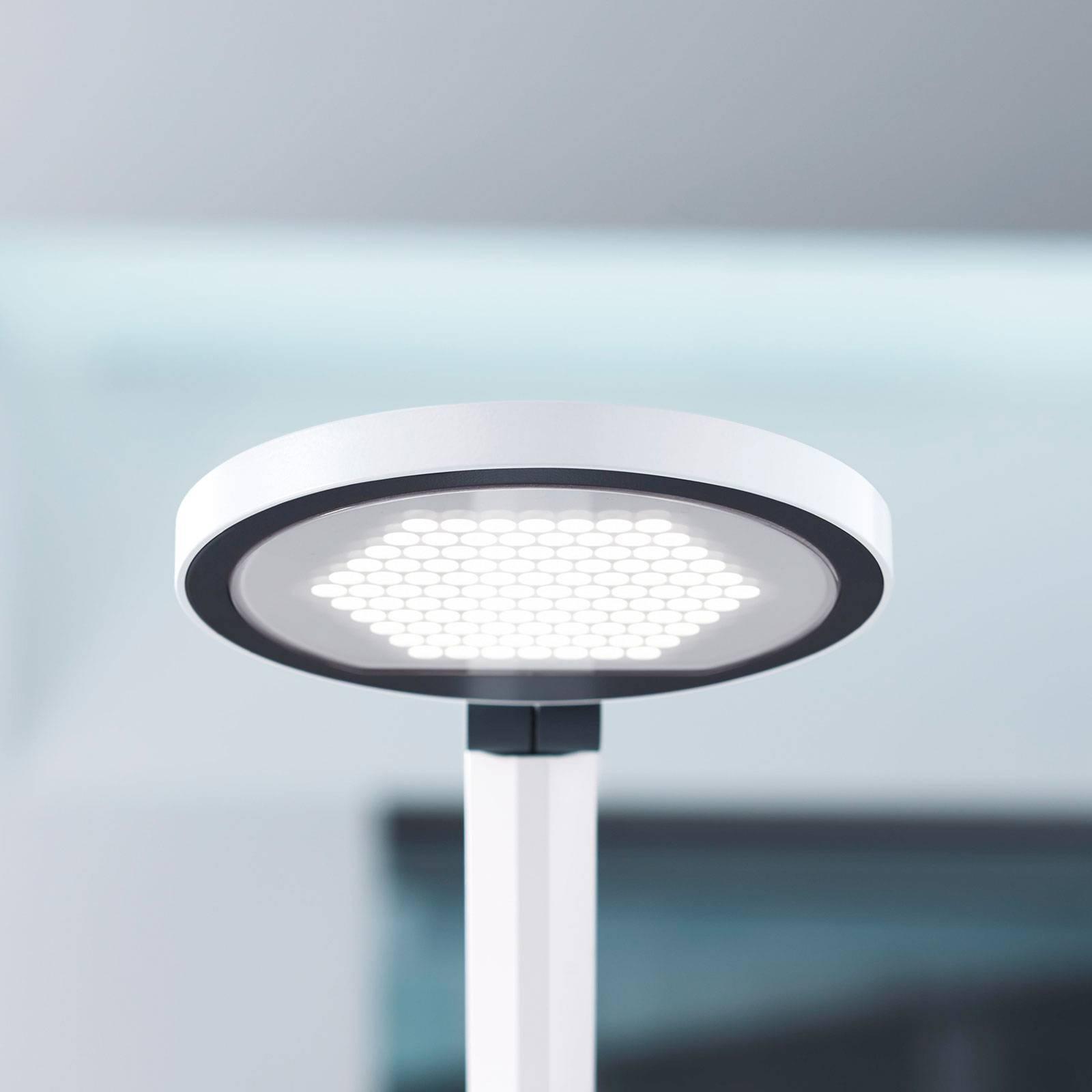 LED-pöytälamppu PARA.MI FTL 102 R valkoinen 940