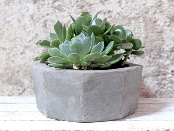 Hexagonal Cement Pot Medium