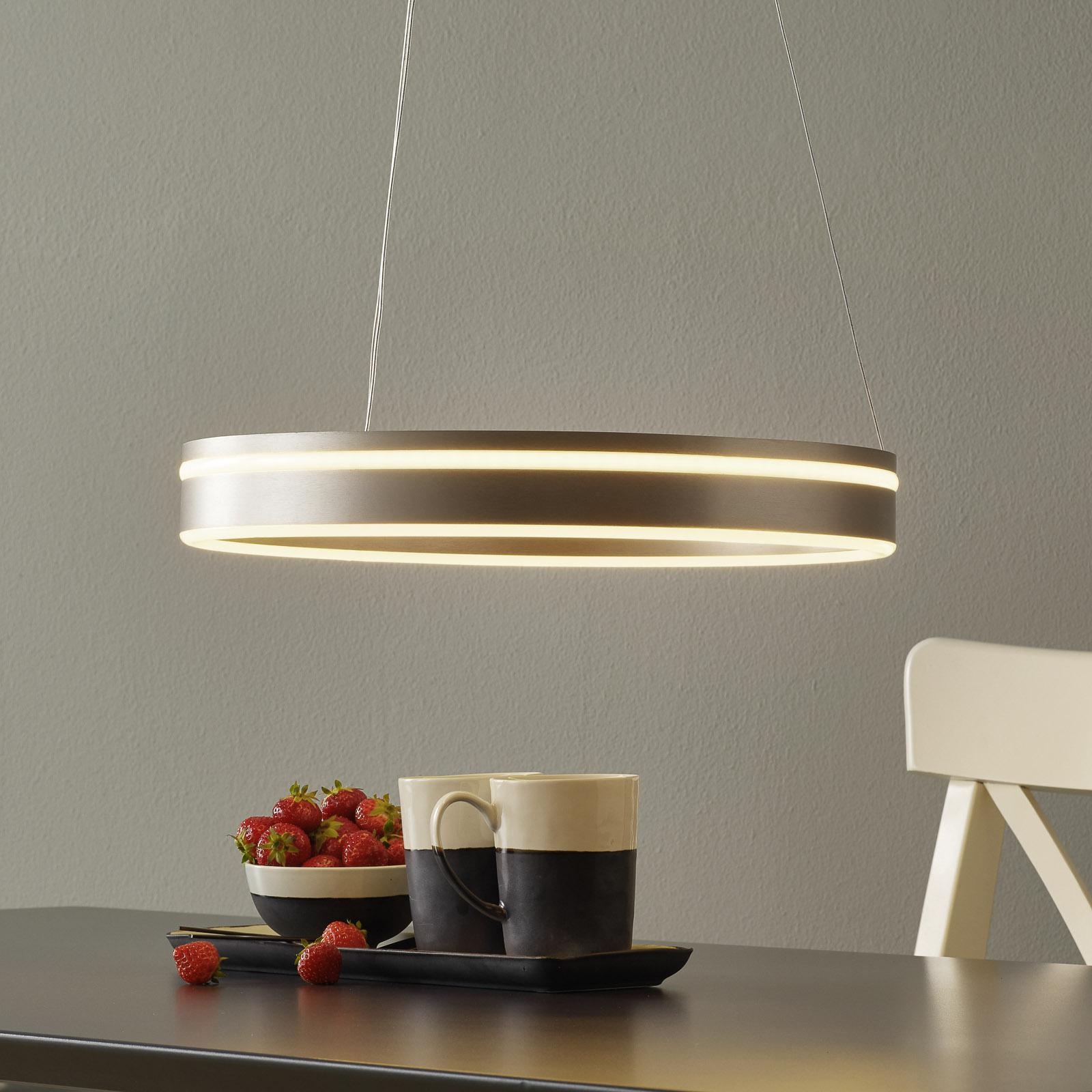 Paul Neuhaus Q-VITO LED-riippuvalaisin 40 cm teräs