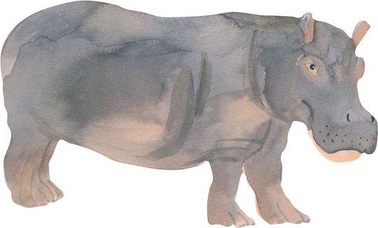 That's Mine Wallsticker Hippo