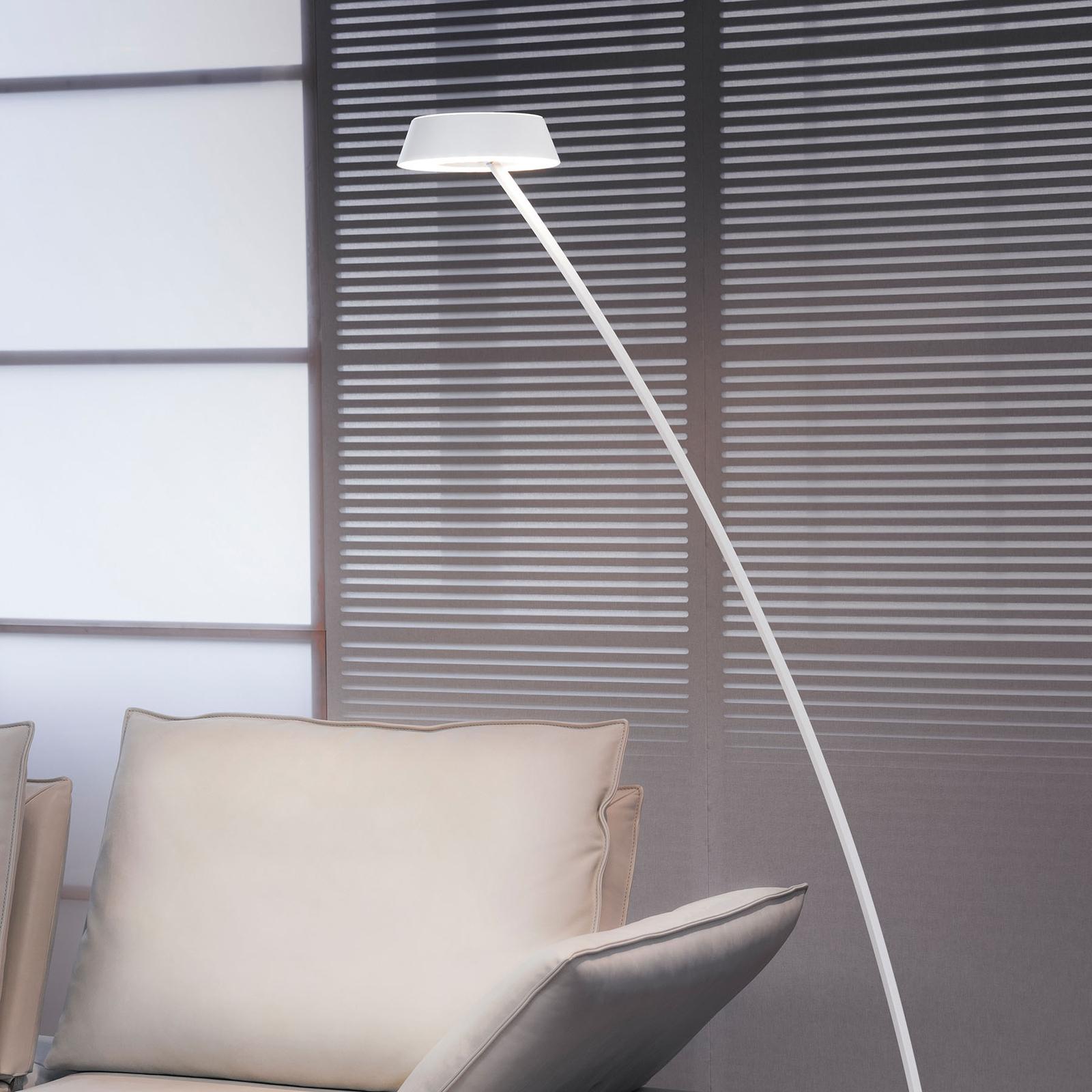 OLIGO Glance LED-lattiavalo, kaareva, valkoinen