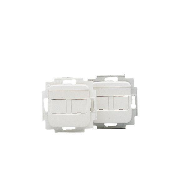 ABB FOT5000 Asennusrunko sisältää keskiölevyn 2 x RJ45, Keystone