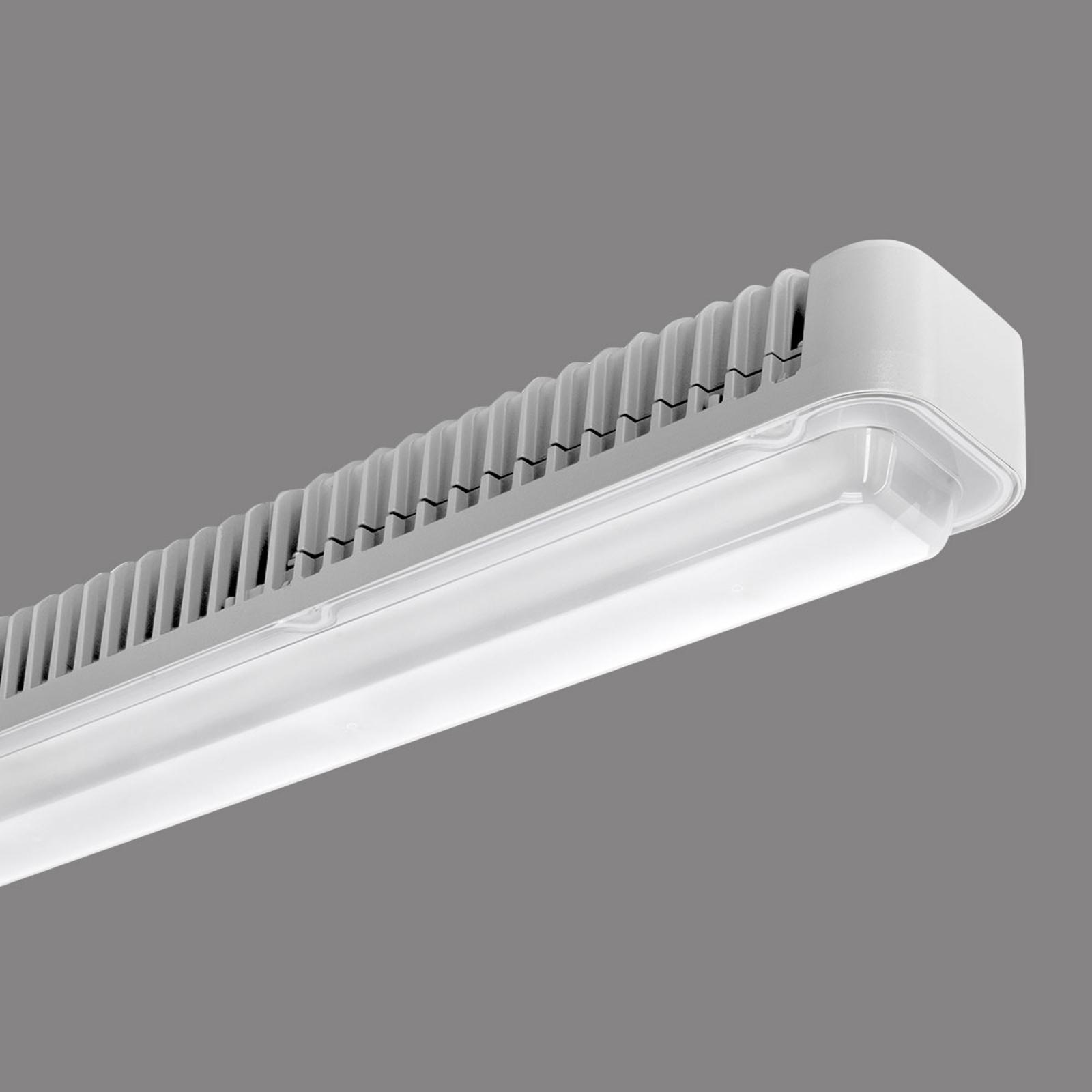 LED-kattovalaisin Koa Line STR/PC S/EW 112W
