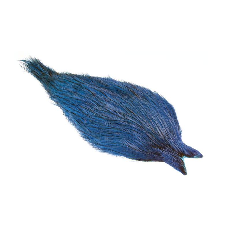 Whiting Coq De Leon Rooster Cape Badger/Kingfisher Blue