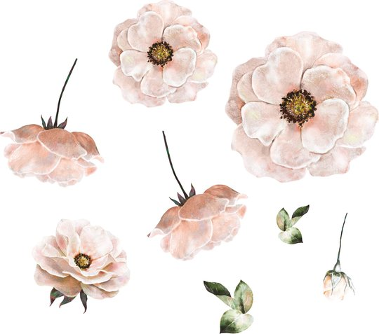 That's Mine Wallsticker Poppy Flower, Rose