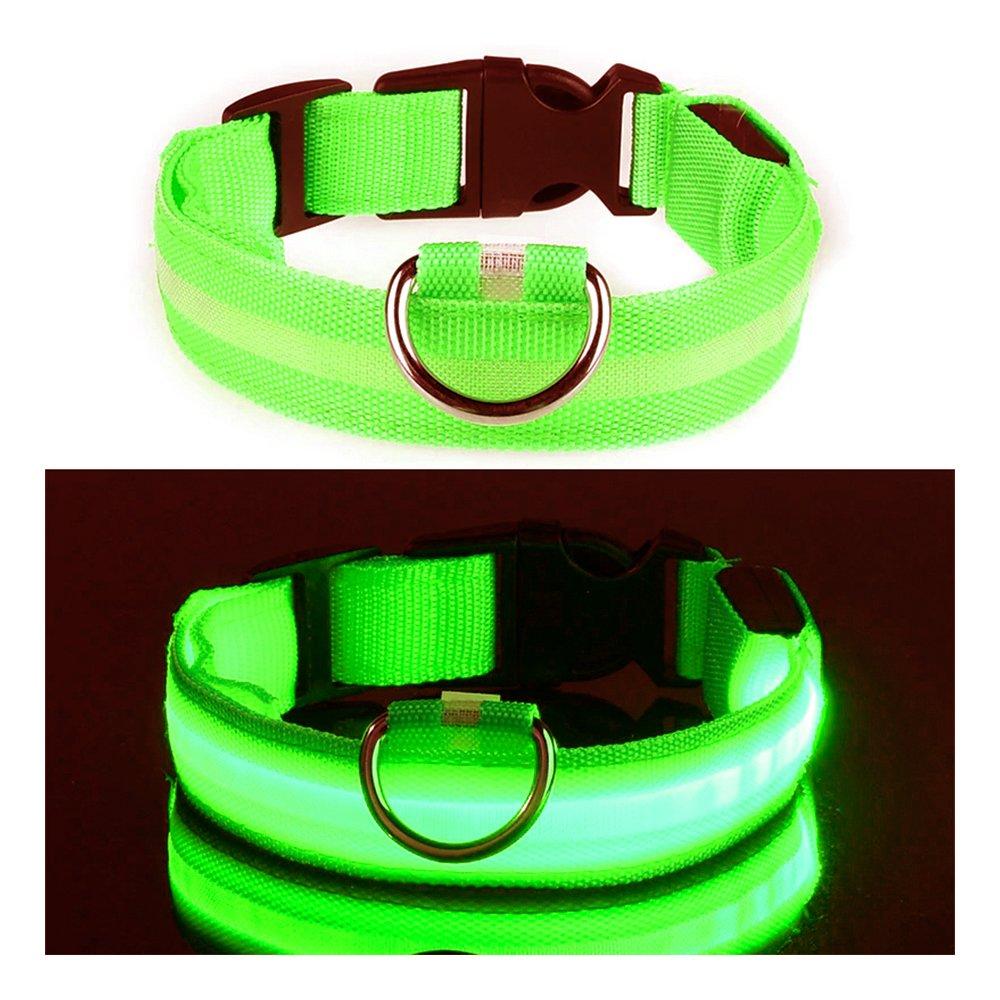 LED Hundhalsband - Grön - Small