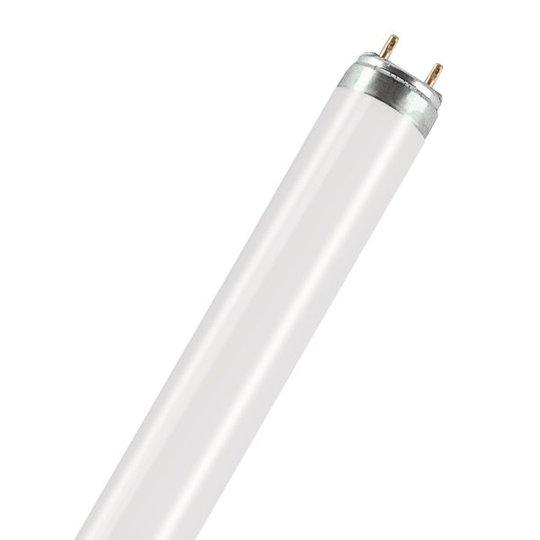 Osram Lumilux Natura Erikoisloisteputki tuoretuotteille 36W, 1200 mm