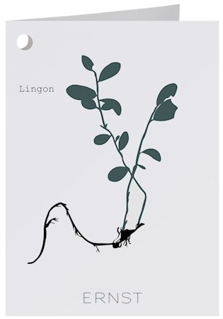 Kort Lingon