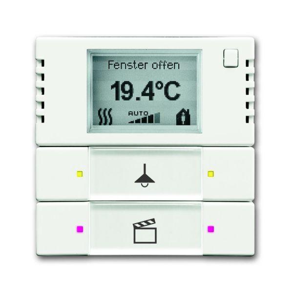 ABB 6134-0-0338 Termostaattinäyttö 2-napainen, matta valkoinen