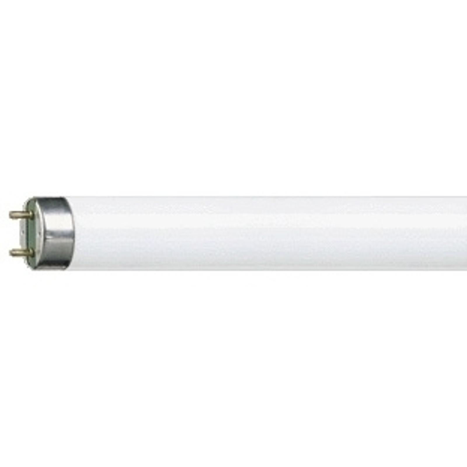 G13 T8 30 W Loistelamppu MASTER TL-D Super 830