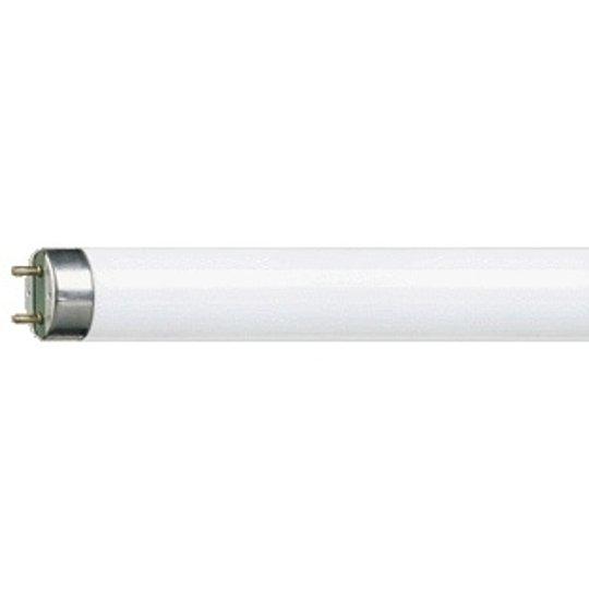 G13 T8 36 W Loistelamppu MASTER TL-D Super 827