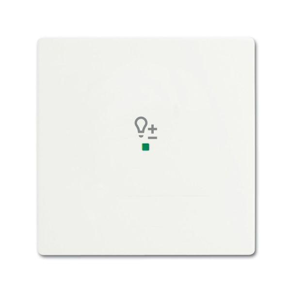 ABB Future Linear 6220-0-0605 Yksiosainen vipupainike himmennin valkoinen