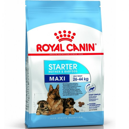 Royal Canin Maxi Starter (15 kg)