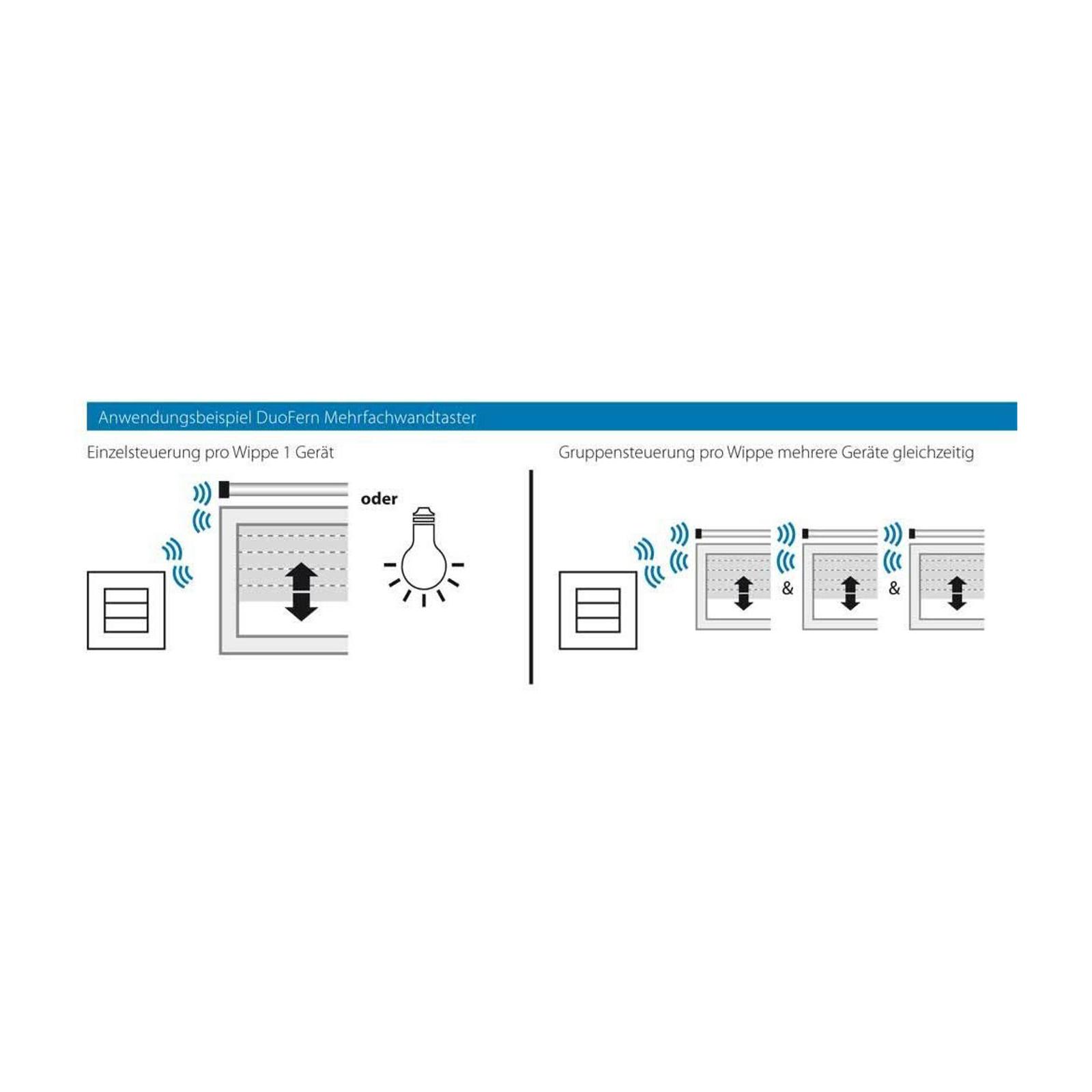 Rademacher DuoFern -monitoimiseinäkytkin 230 V