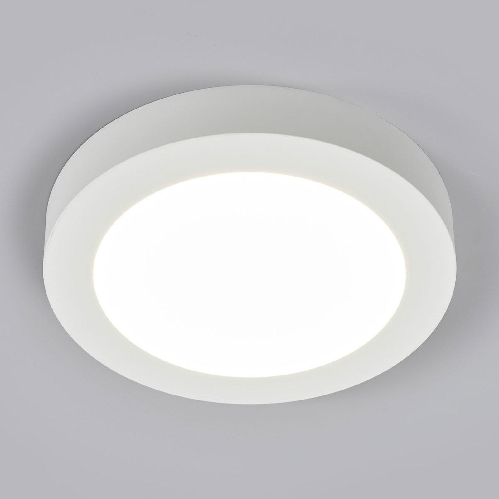 LED-taklampe Marlo, hvit, 4 000 K rund 25,2cm