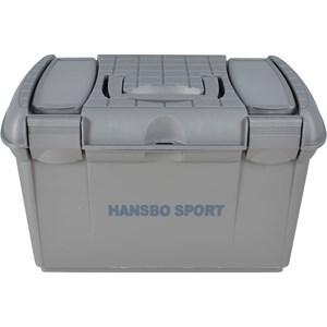 Ryktlåda Hansbo Sport, Silver