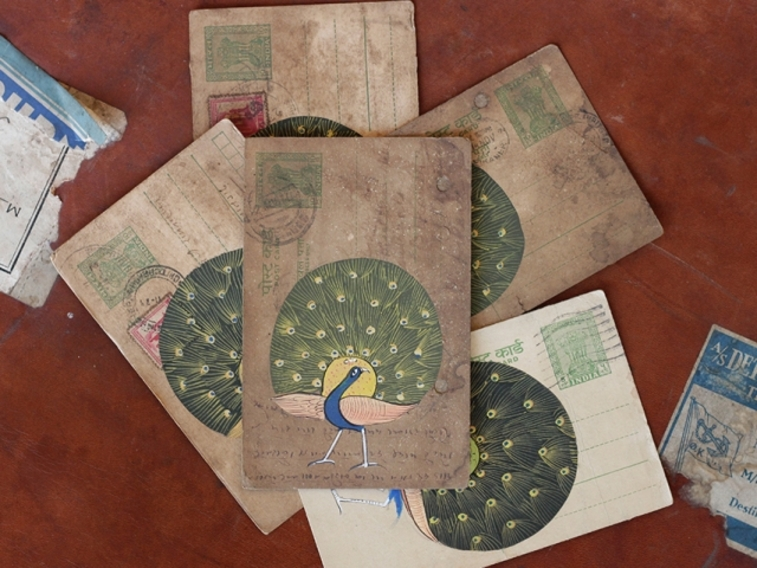 Vintage Postcard - Parading Peacock 14CM X 8.5CM