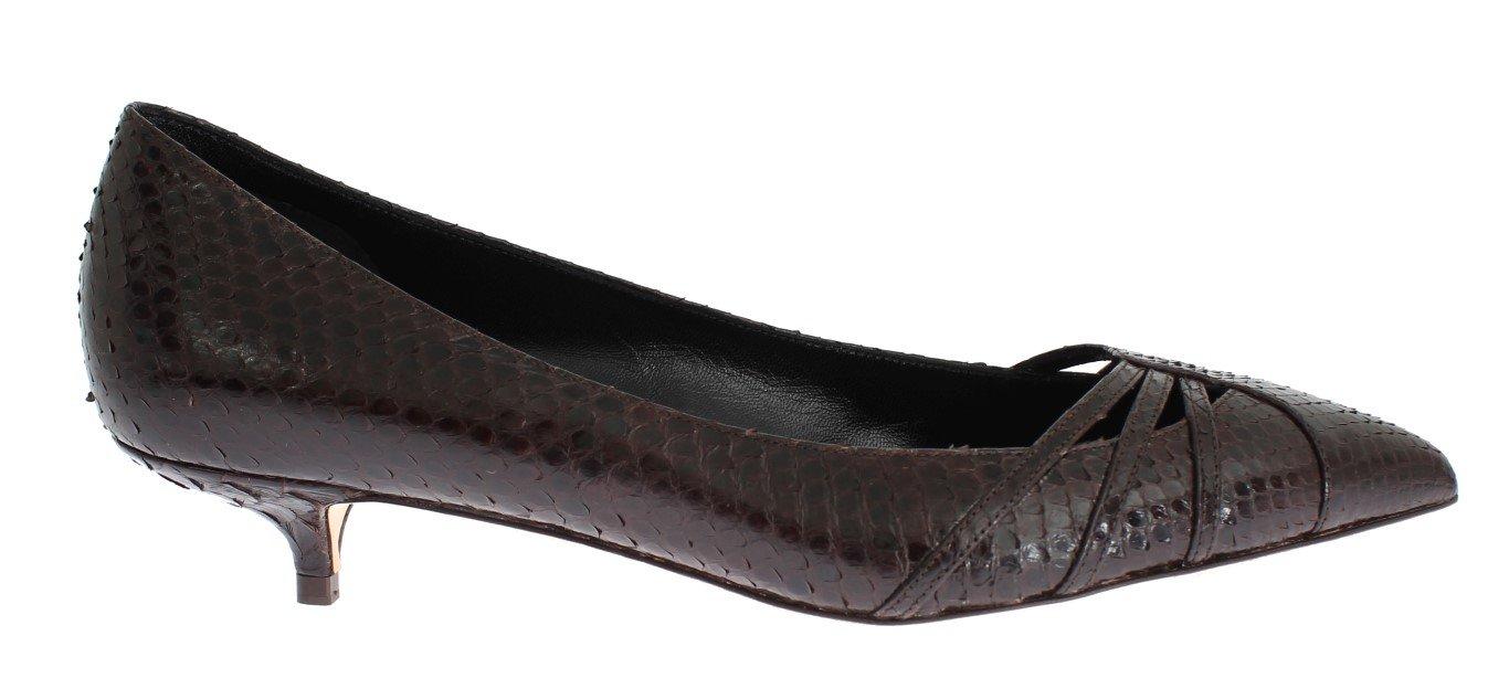 Dolce & Gabbana Women's Snakeskin Kitten Heels Pumps Brown SIG18299 - EU35/US4.5