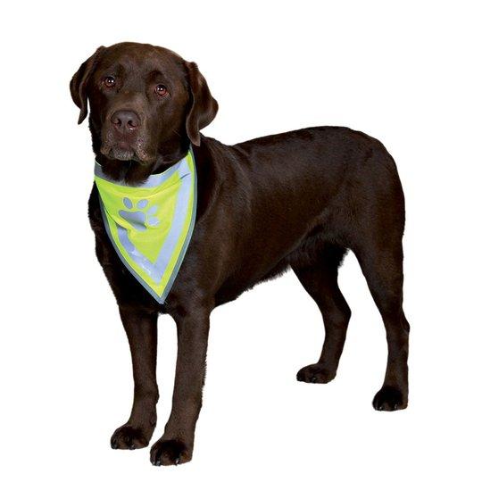 Säkerhetsscarf Med Reflex (XS/S)