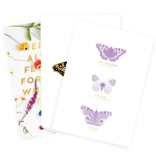 Butterfly Art Print Pack A5