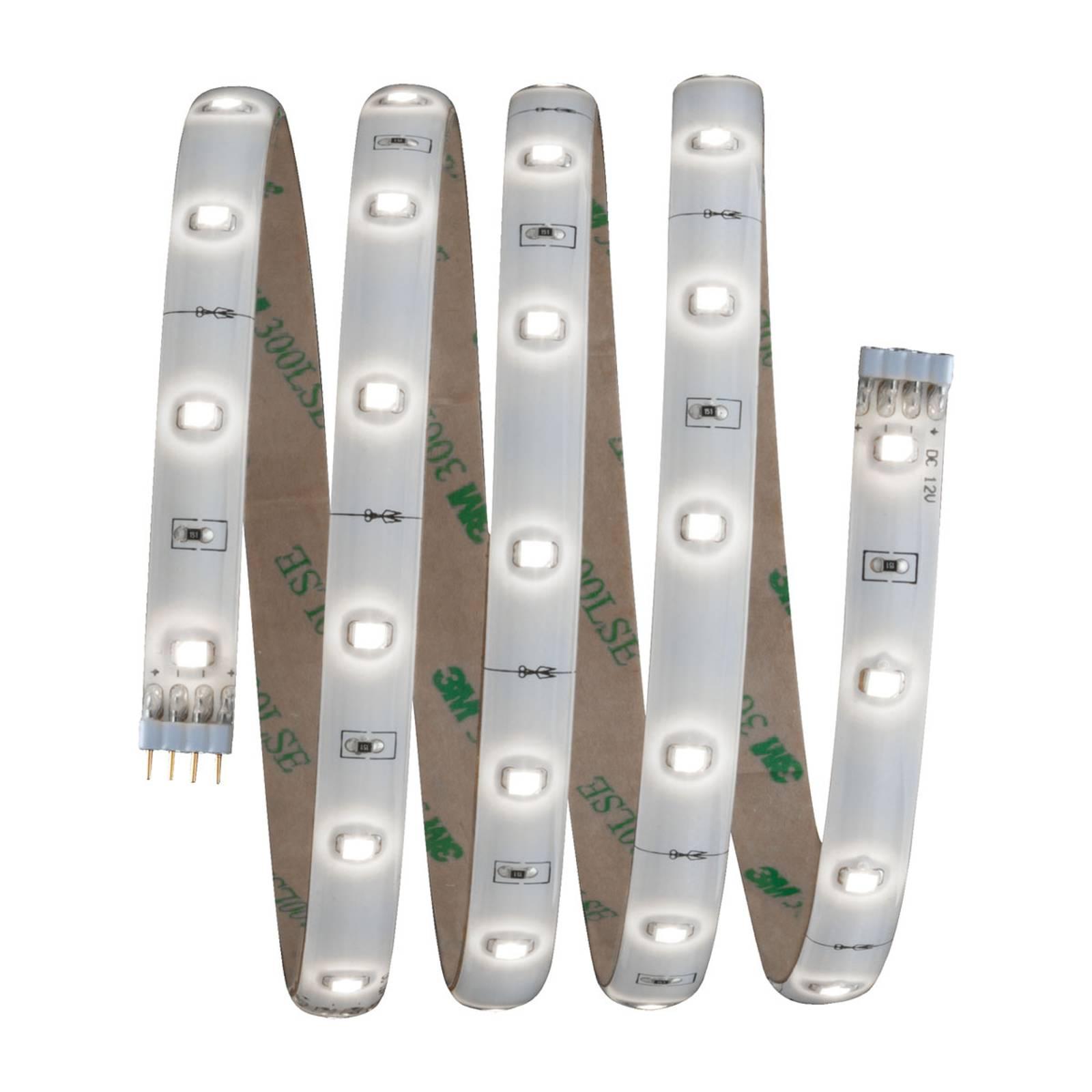 Paulmann YourLED -perussarja LED-nauha 1,5m, 6000K