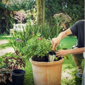 Planteringsspade Fiskars Premium, bred