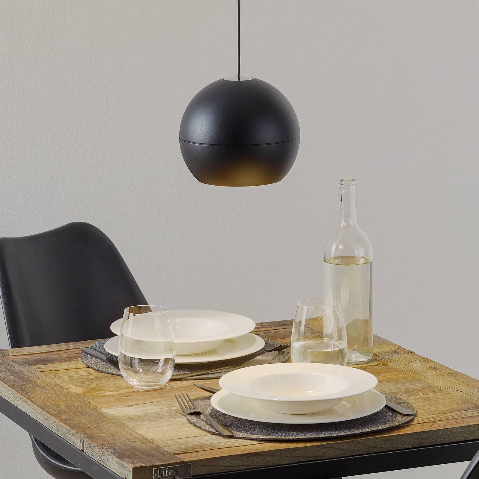 BEGA Studio Line Pendel DALI, musta/alumiini Ø19cm