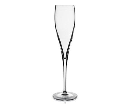 Vinoteque champagne perlage kl