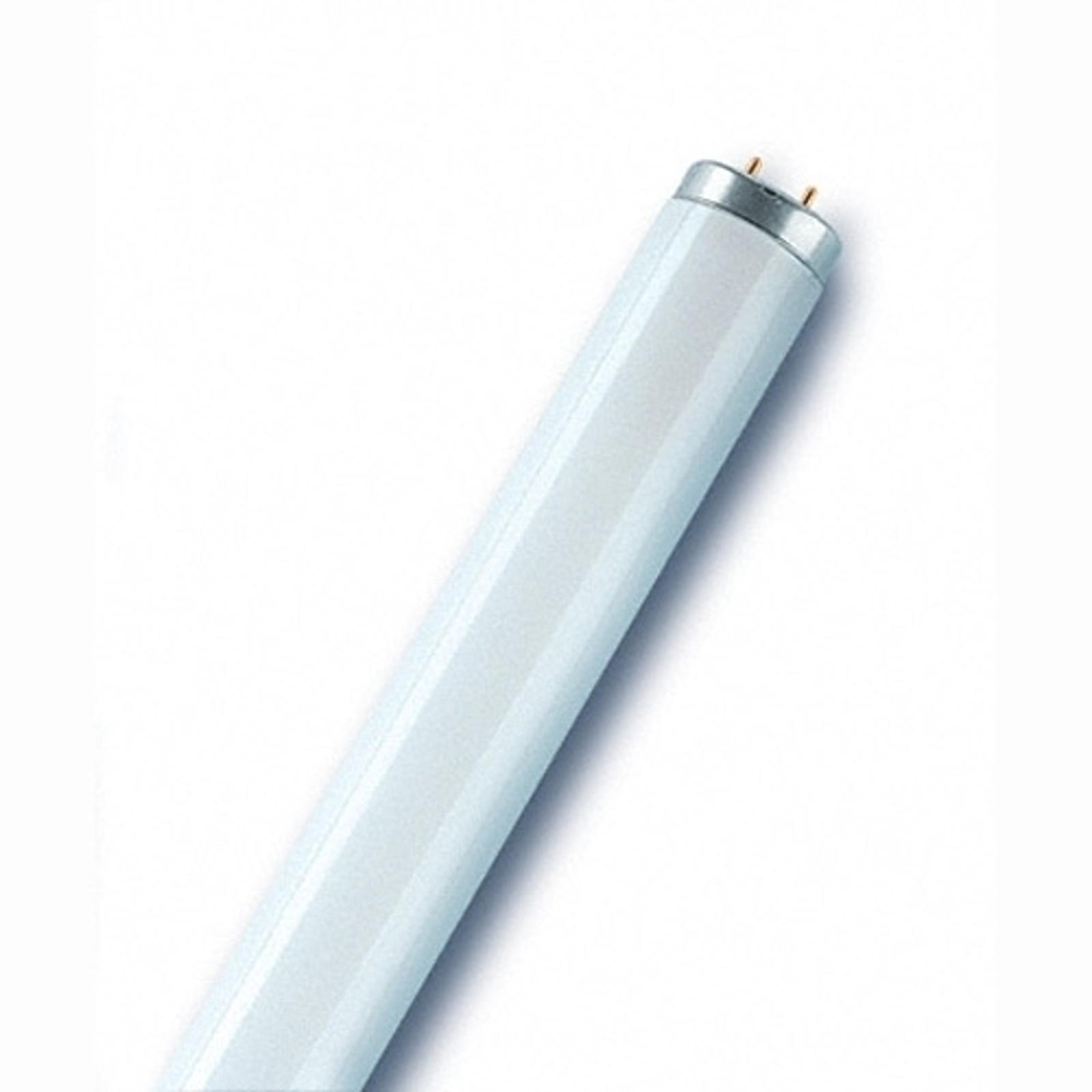G13 T12 65W -loistelamppu SA-malli