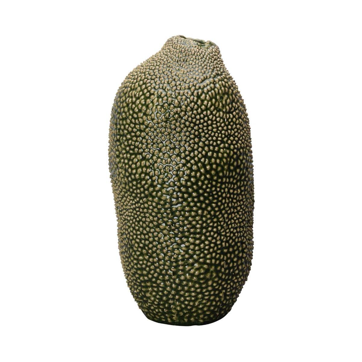 Vas Caulerpa stor grön, ByON