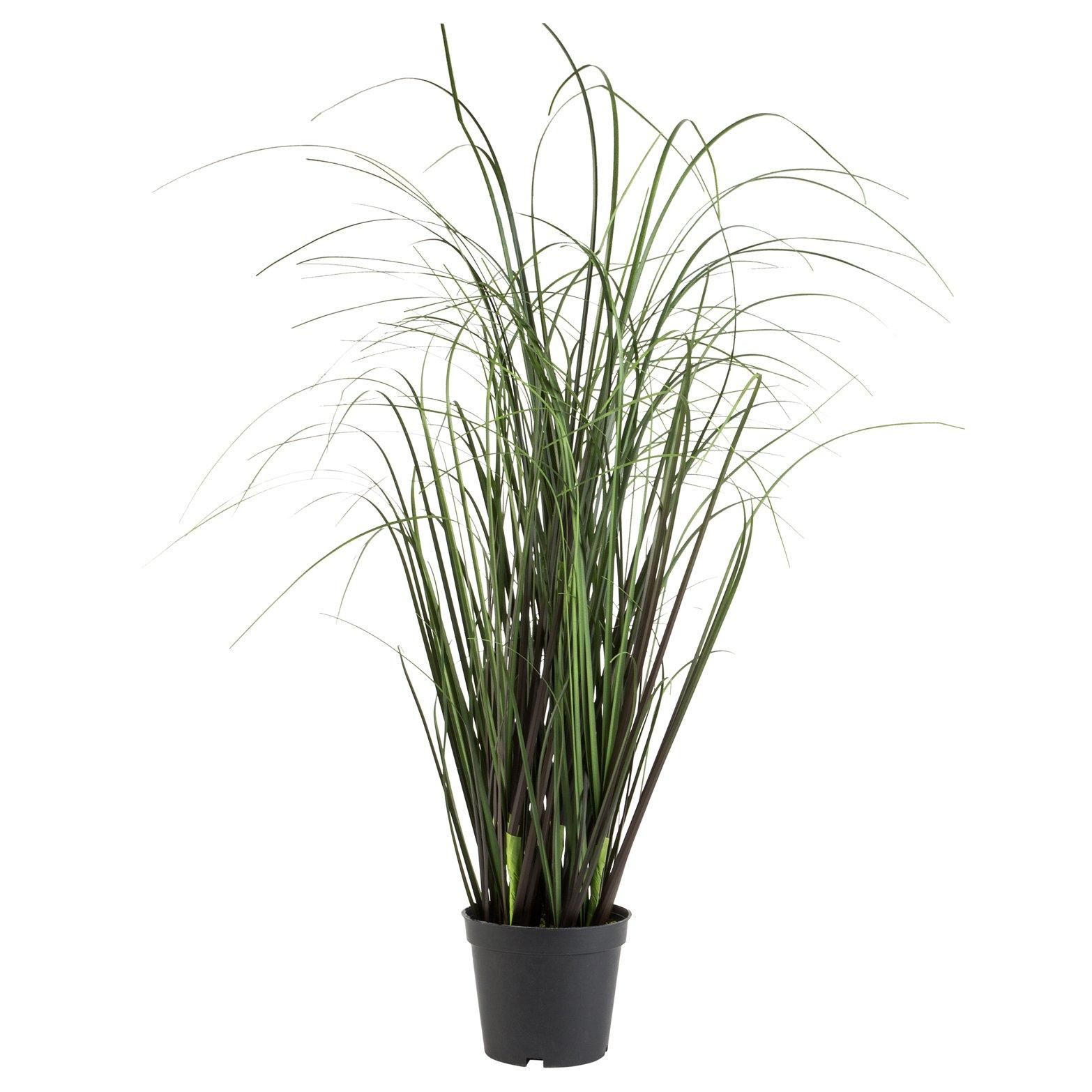 Gressplante i potte håndlaget